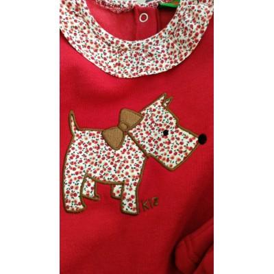 Chandal KIZ perrito rojo CHT15